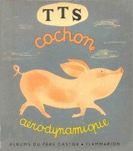 TTS cochon aérodynamique